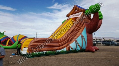 Giant Inflatable Side Rental Denver Colorado