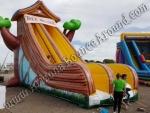 Inflatable tree house slide rental Denver Colorado