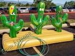 Cactus Ring Toss Game Rental Denver Colorado.jpg