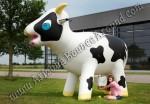 Cow Milking Game Rental Denver, Colorado Springs, Aurora, Fort Collins, Lakewood, Colorado