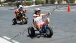 Jumbo Adult Tricycle rental Denver CO