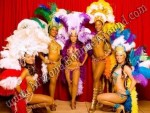 Corporate Entertainment - Entertainers - Hula and Fire Dancers - Denver, Colorado Springs, Aurora, Fort Collins, CO