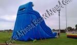 Inflatable Slide Rental Denver Colorado