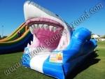 Jaws Slip N Slide rental, shark water slide rentals