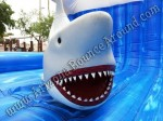 Mechanical shark rentals Denver Colorado