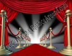 Red Carpet Event Rentals in Denver, Colorado